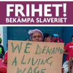 FRIHET! Bekämpa slaveriet