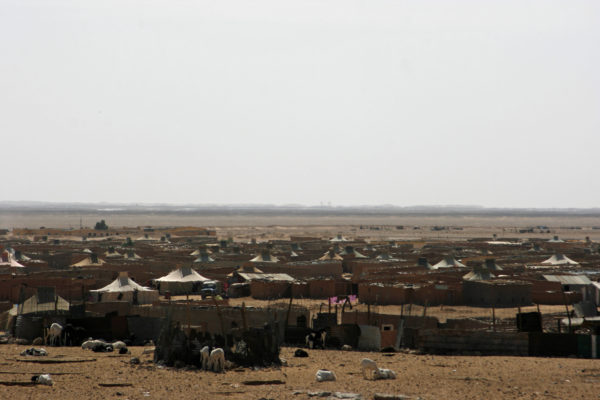 Flyktingläger Västsahara, Foto: Palmecentret