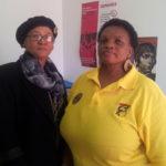 Utrikes per ahlin enpartistaten sydafrika