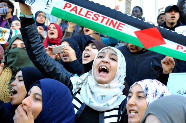Demonstration i Palestina. Foto: IBL